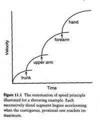 Summation-of-speed-kinetic-chain